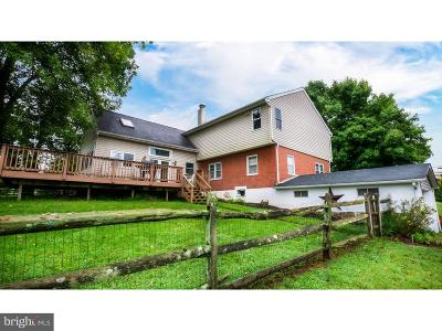 Bucks County Single Family Home For Sale: 5219 Route 313