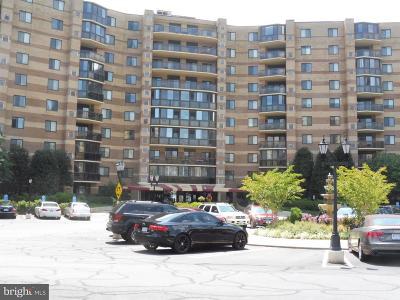 Mclean Rental For Rent: 8360 Greensboro Drive #1021