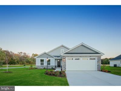 Coatesville Single Family Home For Sale: 124 N Harner Boulevard