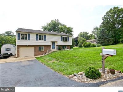 Hockessin Single Family Home For Sale: 118 Dandelion Drive