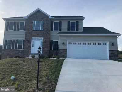 Mount Holly Springs Single Family Home For Sale: 213 Parkway Drive