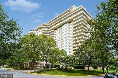 Chevy Chase Condo For Sale: 5600 Wisconsin Avenue #1-1109