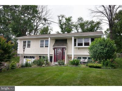 Audubon Single Family Home For Sale: 39 Brimfield Road