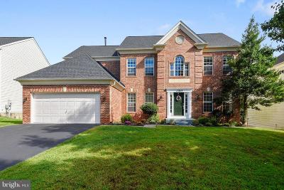 Germantown Single Family Home For Sale: 17809 Cricket Hill Drive