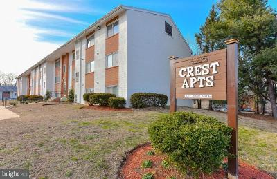 Capitol Heights Rental For Rent: 5231 Marlboro Pike #102