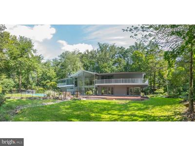 Bryn Mawr Single Family Home For Sale: 713 Waverly Road