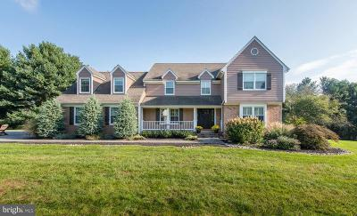 Baltimore County Single Family Home For Sale: 3 Colonial Oaks Court