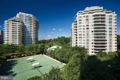 Chevy Chase Condo For Sale: 5630 Wisconsin Avenue #205