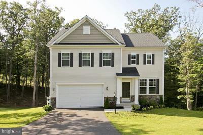 Frederick County, Harrisonburg City, Page County, Rockingham County, Shenandoah County, Warren County, Winchester City Single Family Home For Sale: 109 Green Drive