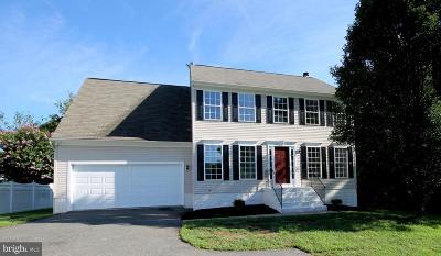 Fredericksburg Single Family Home For Sale: 54 Little Oak Road