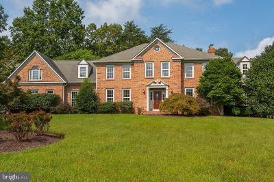 Virginia Run Single Family Home For Sale: 15430 Eagle Tavern Lane