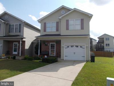 Single Family Home For Sale: 1347 Horseshoe Circle