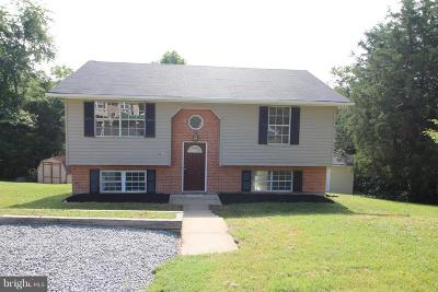Fredericksburg Single Family Home For Sale: 2004 Mill Garden Drive