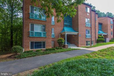Reston Condo For Sale: 11802 Breton Court #2C