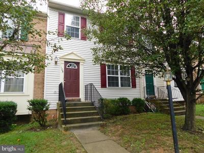 Fredericksburg Rental For Rent: 105 Regina Lane