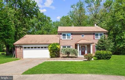 Dunn Loring Single Family Home For Sale: 8002 Woodcroft Court