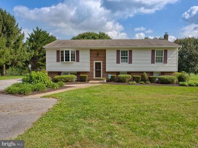 Mount Airy Single Family Home For Sale: 5157 Perry Road