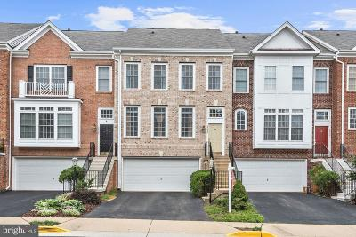 Loudoun County Townhouse For Sale: 18423 Montview Square