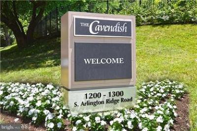 Arlington Rental For Rent: 1200 Arlington Ridge Road S #416