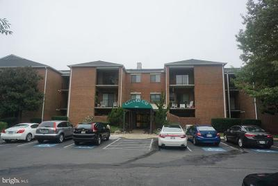 Annapolis Condo For Sale: 2900 Shipmaster Way #315