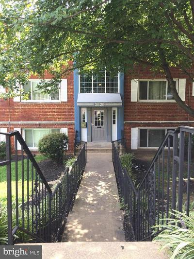 Hyattsville Rental For Rent: 3829 Hamilton Street #E-103