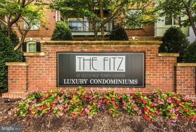 Rockville Condo For Sale: 501 Hungerford Drive #461