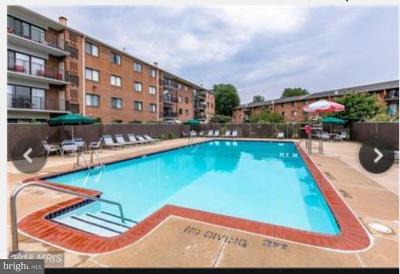 Falls Church Rental For Rent: 7614 Savannah Street #303
