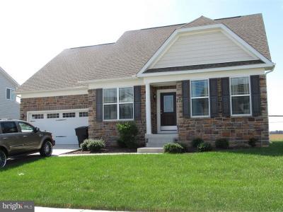Dover Single Family Home For Sale: 54 Wellington Avenue
