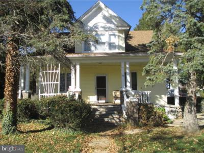 Newfield Single Family Home For Sale: 8 Pearl Street