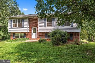 Culpeper County Single Family Home For Sale: 16395 Bruce Mountain