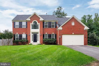 Herndon Single Family Home For Sale: 1005 Young Avenue
