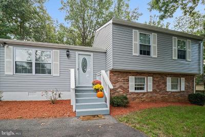 Mechanicsville Single Family Home For Sale: 35759 Aviation Yacht Club Road