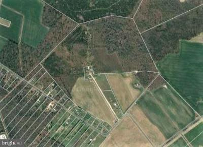 Residential Lots & Land For Sale: Staytonsville Road