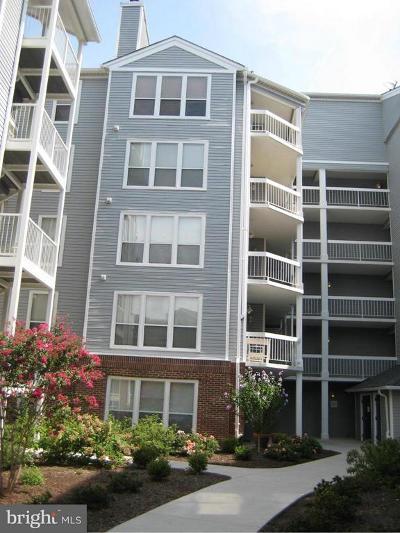 Oakton Rental For Rent: 3175 Summit Square Drive #5-D12