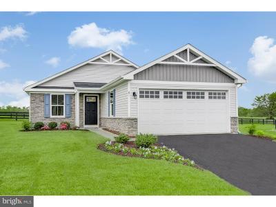 Coatesville Single Family Home For Sale: 132 N Harner Boulevard