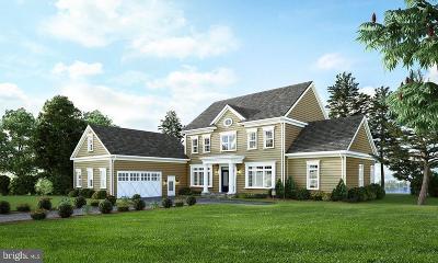 San Domingo Cove Single Family Home For Sale: 960 Marea Terrace