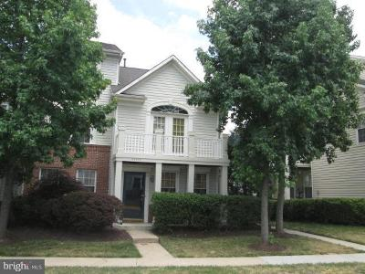 Ashburn Condo For Sale: 43304 Greyswallow Terrace