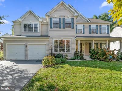 Loudoun County Single Family Home For Sale: 405 N Mohawk Court