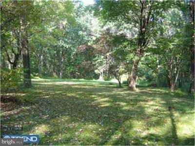 Bucks County Residential Lots & Land For Sale: 67 W Peace Valley Road