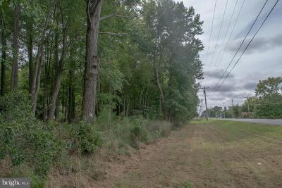 Somerset County Residential Lots & Land For Sale: Parcel 348 Crisfield Highway