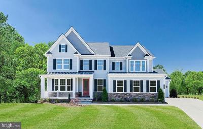 Clarksburg Single Family Home For Sale: 21 Lynwood Farm Court