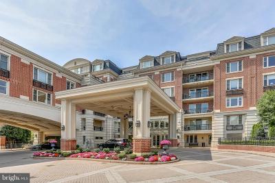 Baltimore City Rental For Rent: 801 Key Highway #153