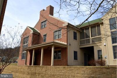 Mercersburg Townhouse For Sale: 13894 Trailside Lane