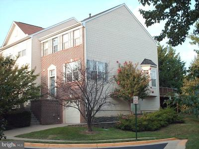 Vienna Rental For Rent: 2831 Roesh Way