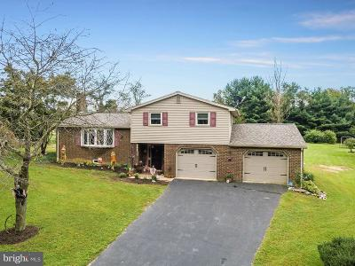 Dallastown Single Family Home For Sale: 244 Nollyn Drive
