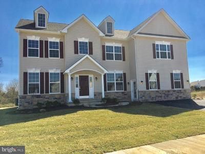 Smyrna Single Family Home For Sale: 13 Mischief Lane