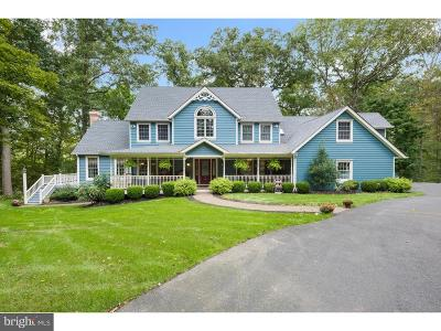 Bucks County Single Family Home For Sale: 11 Brick Church Road