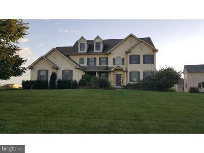 Norristown Single Family Home For Sale: 1415 Reiner Road
