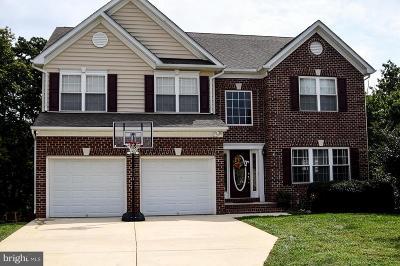 Lexington Park Single Family Home For Sale: 22529 Dunleigh Drive