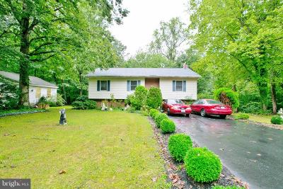 Lexington Park Single Family Home For Sale: 23155 Marshall Road
